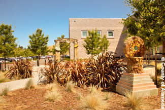 Photo of landscaping outside the Juvenile Justice Center.