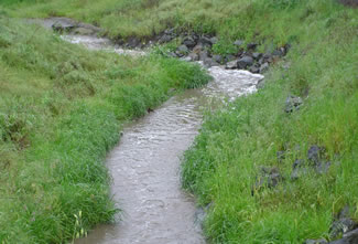 Photo of Mission Creek.