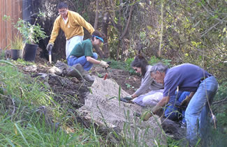 Photo of people restoring a creek.