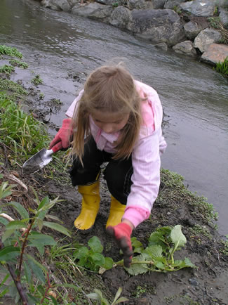 Photo of a child planting near a creek.
