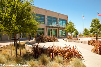Photo of water-wise landscaping at the Juvenile Justice Center.